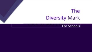 Diversity MArk For Schools